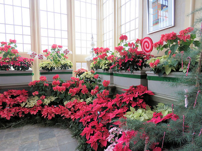 holiday display in the lobby