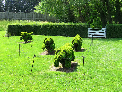 hounds and hunter in the hunt scene topiary