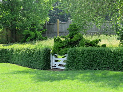 horse and hounds topiary 4