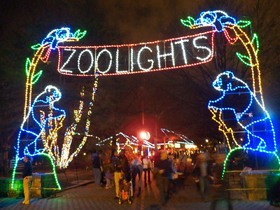 Zoo Lights 2013