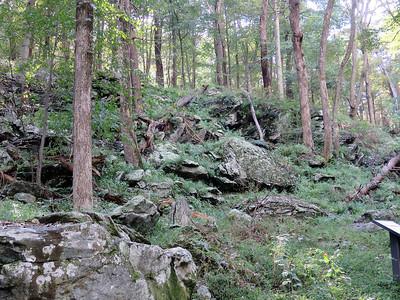 trailside rocks along the Lower Falls trail, Cunningham Falls State Park, September 29,2018