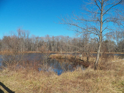 pond at the North Tract, January 20, 2013