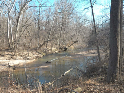 the Little Patuxent River, at the North Tract, January 20, 2013