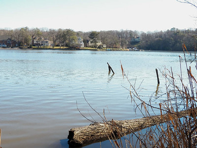 the Severn River, the Brown Property, January 2013