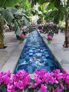 one of the two fountain pools  in the conservatory Garden Court