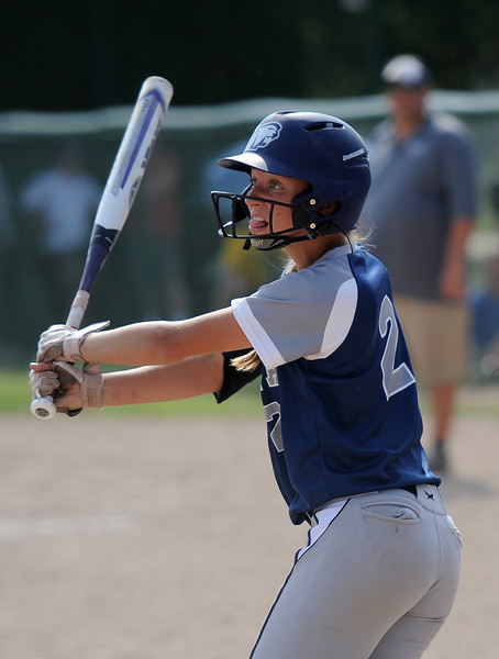 Dakota wins over Garden City 6-5 on June 13, 2017. (MIPrepZone photo gallery by David Dalton)