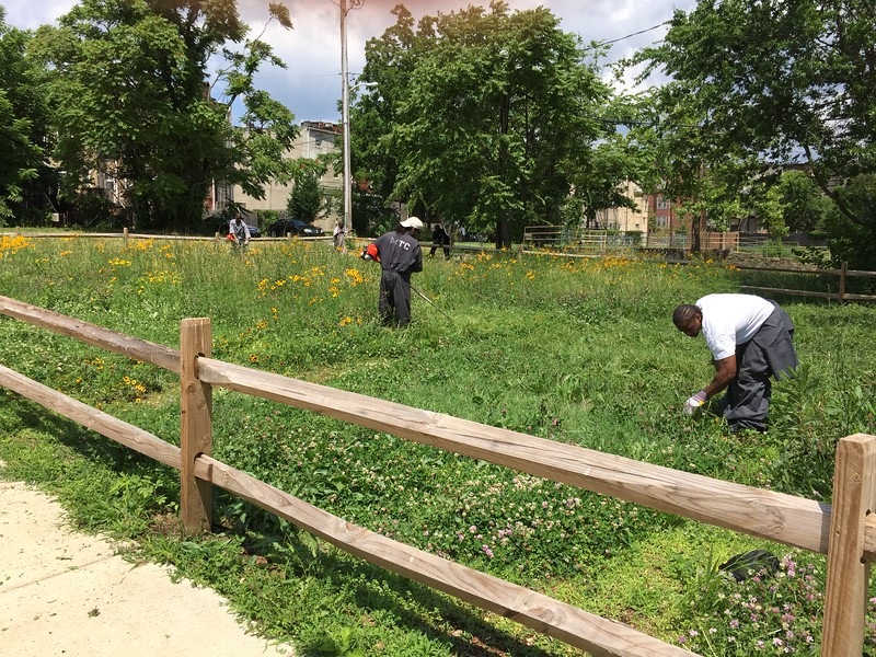 MTC Inmates Maintain Vacant Lot Greening Effort