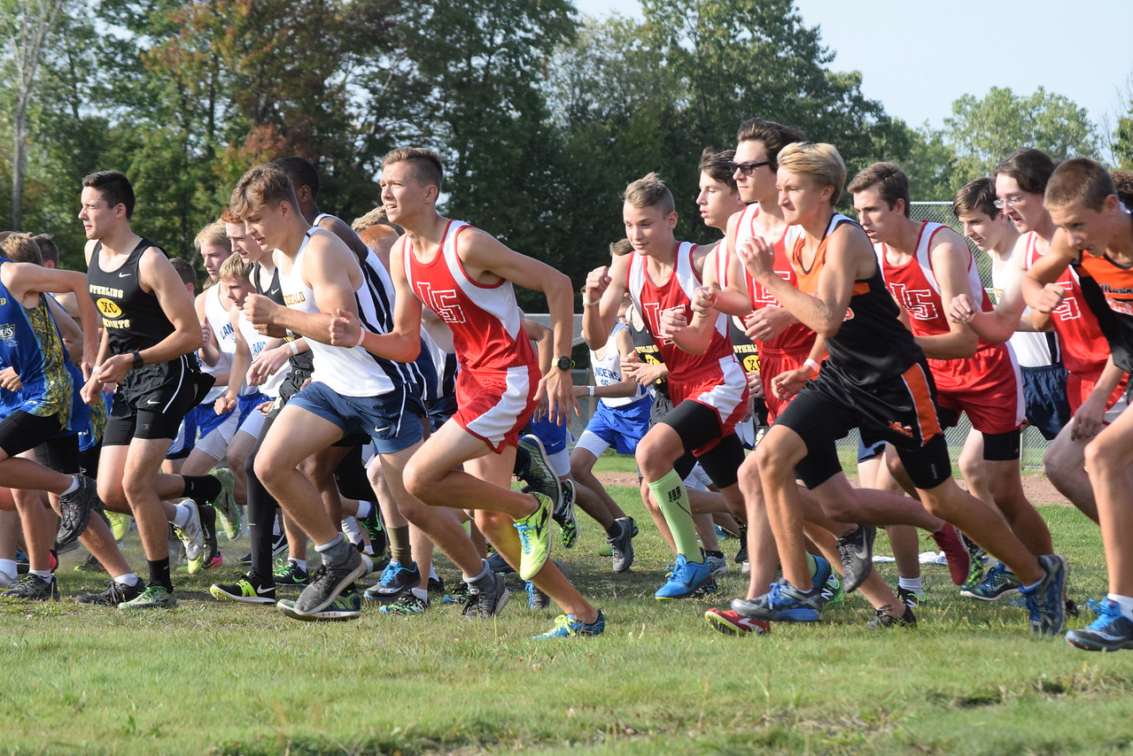 Start of the boys race. MAC Blue Division cross country teams ran their first jamboree of the season at Marysville Park on Sept. 12, 2017. THE MACOMB DAILY PHOTO GALLERY BY GEORGE POHLY
