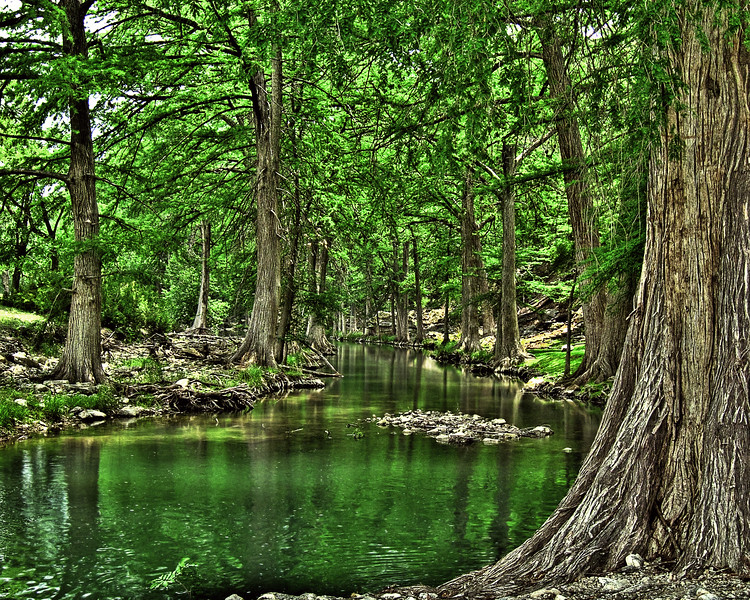 Texas Hill Country-Trees & River