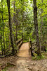 Crystal-Falls-Forest-Bridge