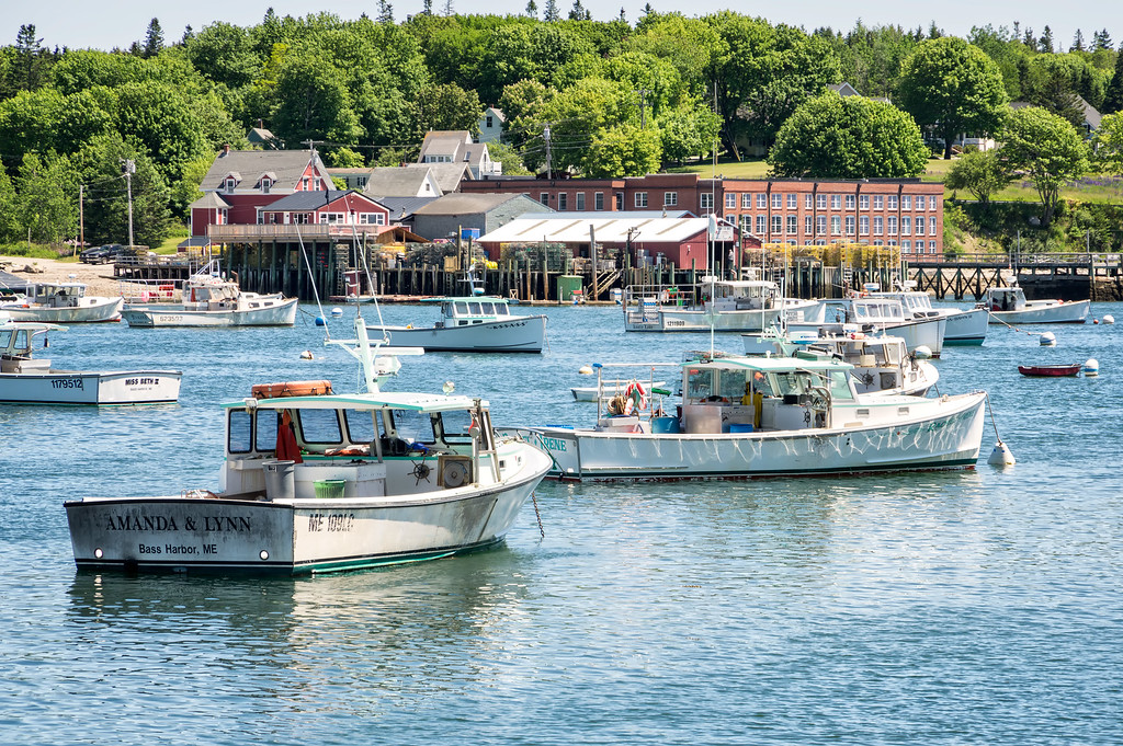 Bass Harbor, ME 6-18-16