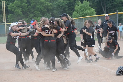 Divine Child celebrates after defeating Richmond 3-2 in eight innings in a state Division 2 quarterfinal game at Novi on Tuesday, June 12.  DIGITAL FIRST MEDIA PHOTO GALLERY BY GEORGE POHLY