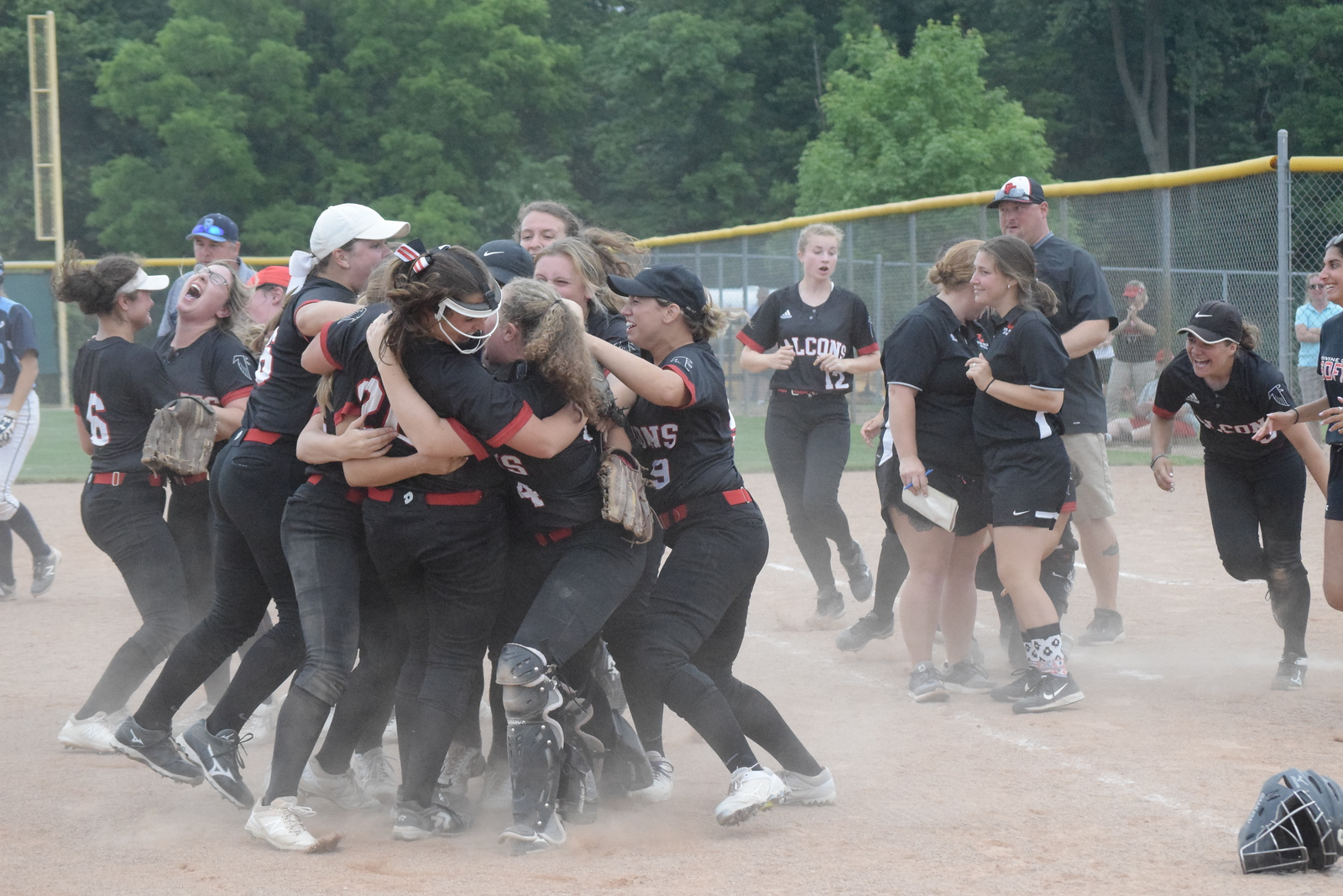 Divine Child scored two runs in the sixth and one in the eighth and defeated Richmond 3-2 in a Division 2 quarterfinal softball game at Novi on Tuesday, June 12. DIGITAL FIRST MEDIA PHOTO GALLERY BY GEORGE POHLY