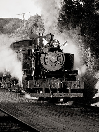 Steam Trains in Niles Canyon