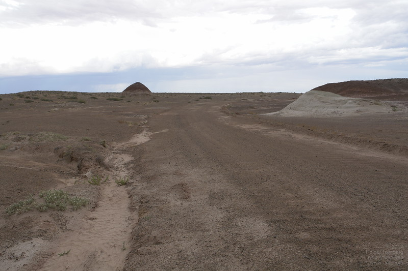 Driving to the nearby dinosaur fossils site