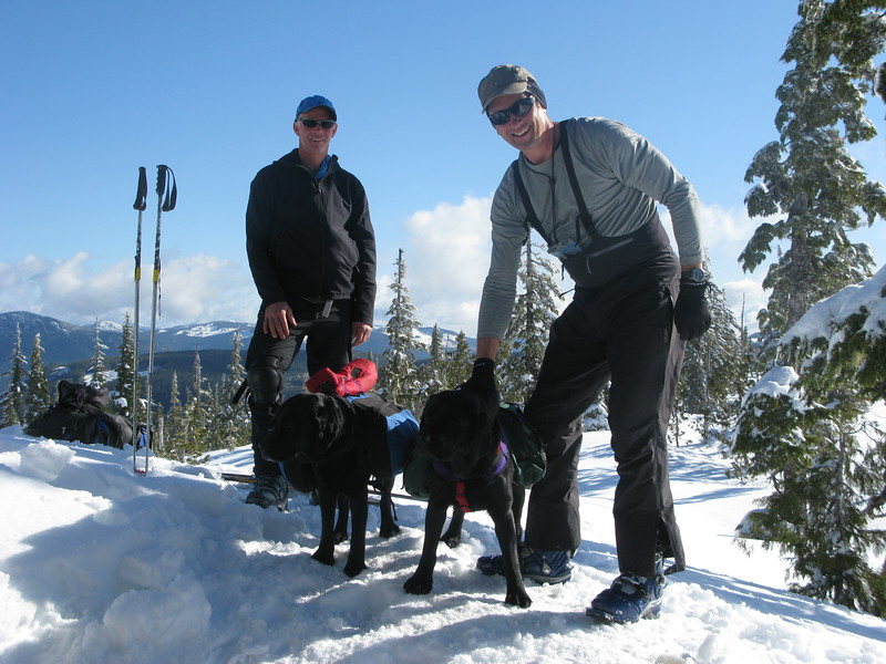 Ski touring with the dogs !