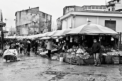 An Istanbul fish market.