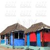 hut palapa colorful tropical cabin isolated