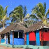 hut palapa colorful tropical cabin palm trees