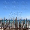 wood stick fence in tropical caribbean sea