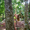 Caucasian girl playing in rainforest jungle