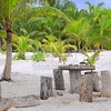 coconut Tulum palm trees beach table and seats