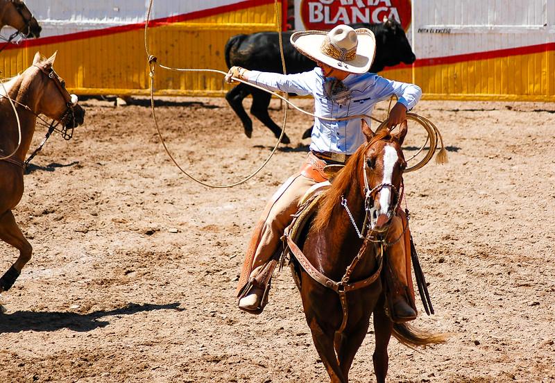 Rodeo<br /> Durango