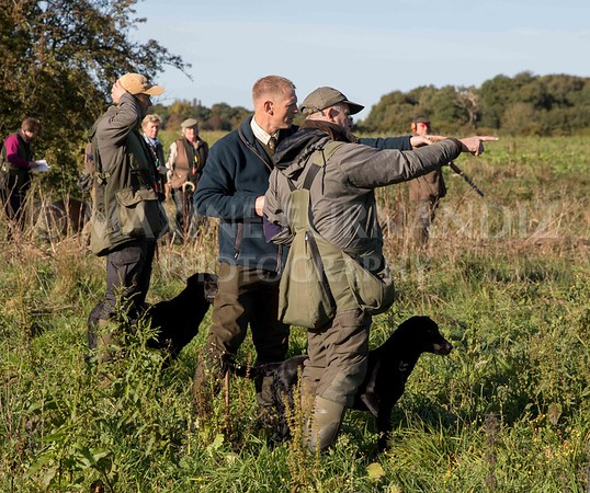 Yorkshire Gundog NoviceFT 6 Oct 2017-1185