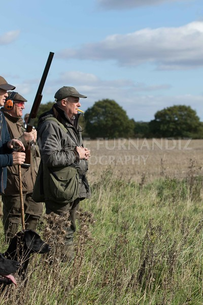 Yorkshire Gundog NoviceFT 6 Oct 2017-0587