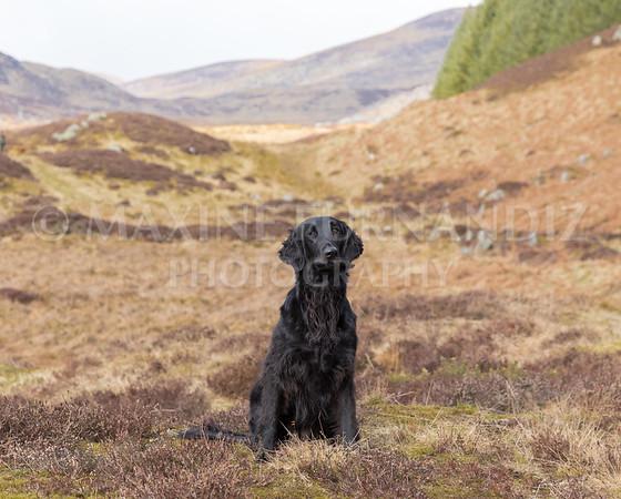 Skye Training in Scotland
