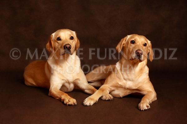 Spalding-9351 Ailsa & Brodie
