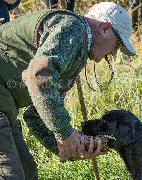 Yorkshire Gundog NoviceFT 6 Oct 2017-0361