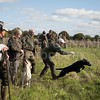 Yorkshire Gundog NoviceFT 6 Oct 2017-1301