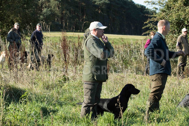 Yorkshire Gundog NoviceFT 6 Oct 2017-0329