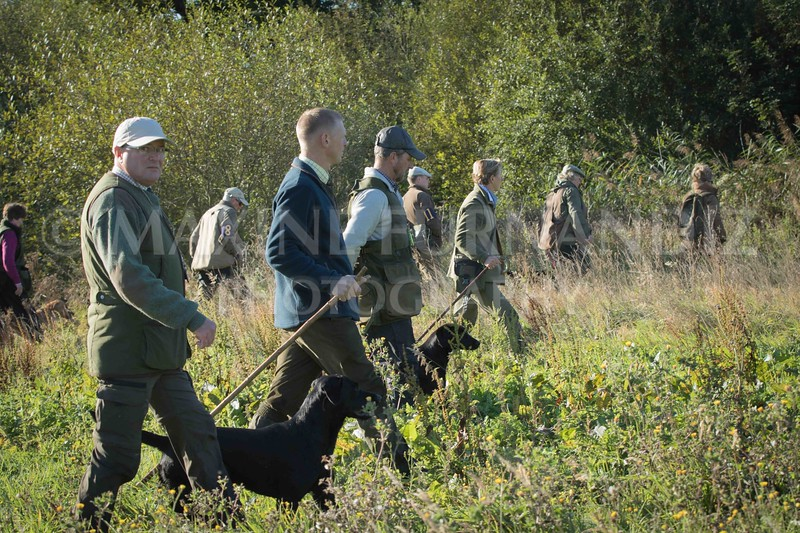 Yorkshire Gundog NoviceFT 6 Oct 2017-0321