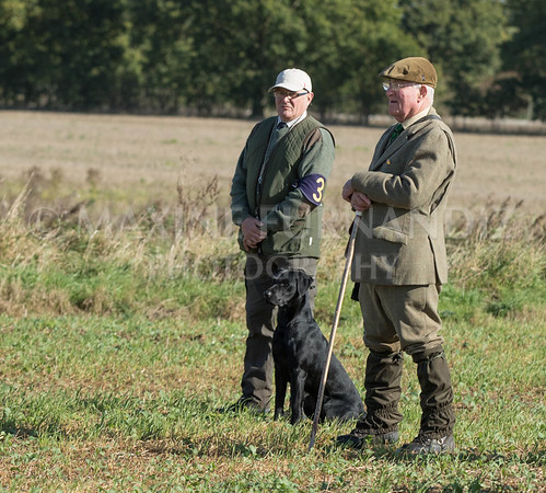 Yorkshire Gundog NoviceFT 6 Oct 2017-0492