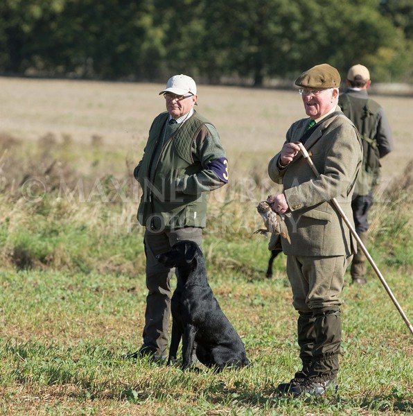 Yorkshire Gundog NoviceFT 6 Oct 2017-0487