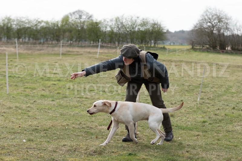 Beginners Gundog March 2020-5018