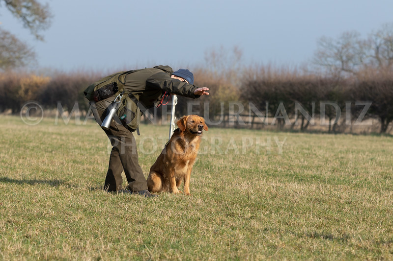 Dog Training Novice GD Feb2019-5950