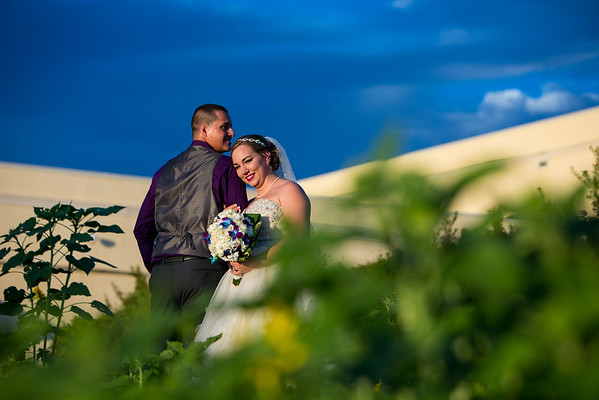 Smith_Wedding_390