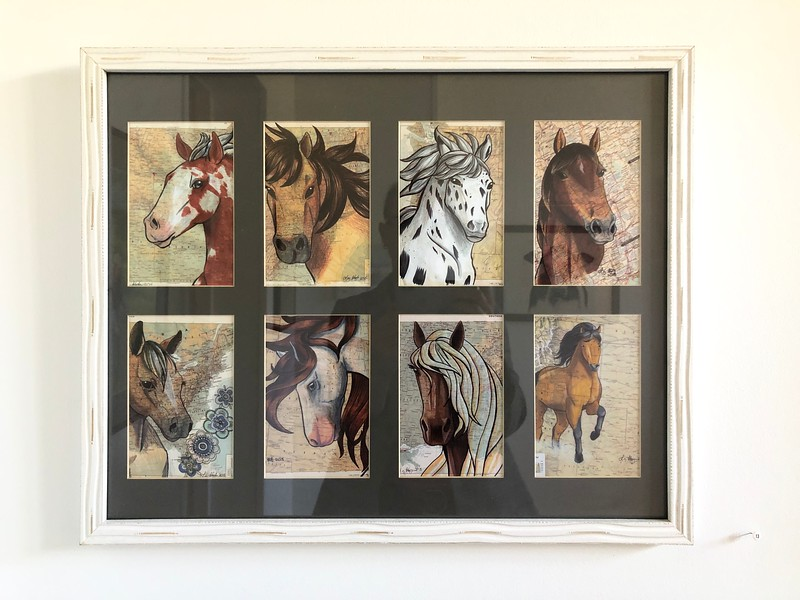 Liz Staley: Horses of the World 2018