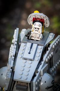 AT-AT and Snow Trooper