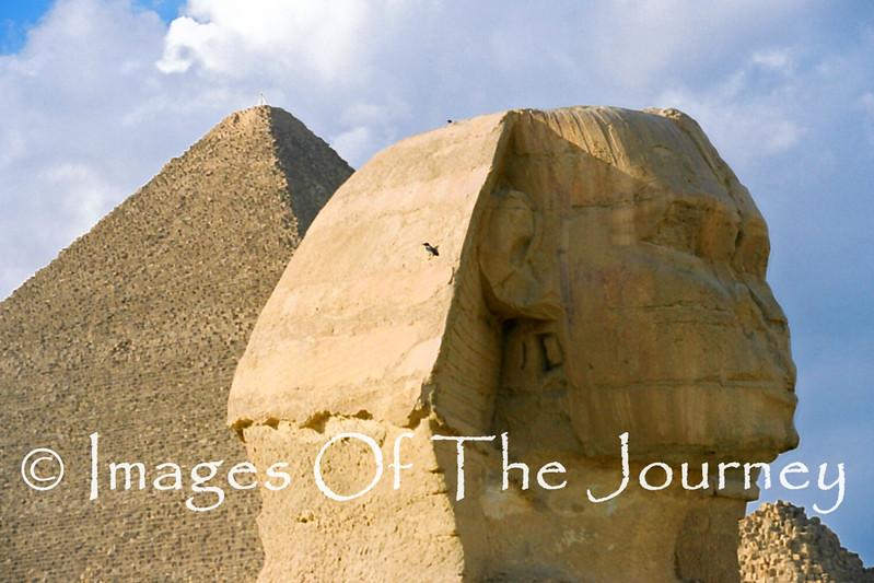 The Three Thousand Year Stare