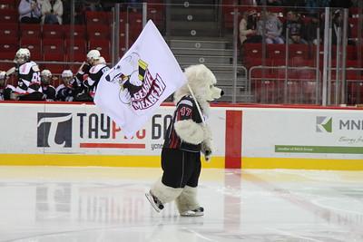 Талисман команды Белые Медведи (Челябинск)
