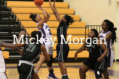 MHS  Girls vs North Webster 1-17-2016-17