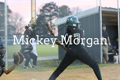 Softball MHS tourment 3-4-2015-16