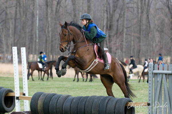 Bay Pink Saddle Pad