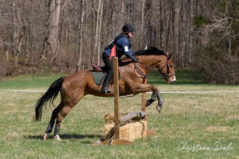 """<a href=""""http://phyxius.smugmug.com/MHT-Jumper-Derby-2010/2-23""""><b>2' - 2'3""""  Timed and Equitation</b></a><p><p>  Each gallery is separated by rider, if you rode in multiple levels don't forget to check for photos of you in the other galleries!<p>  <a href=""""http://phyxius.smugmug.com/MHT-Jumper-Derby-2010/2-23""""><b>2' - 2'3"""" Timed and Equitation</b></a>"""
