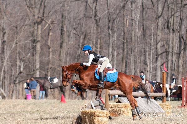 12 - Chestnut Blue Saddle Pad
