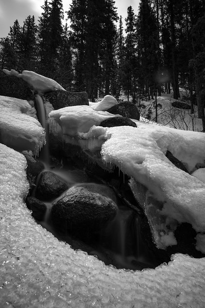 Horse Thief Falls on Ice